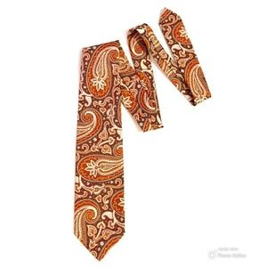 Vintage Sears Paisley Tie